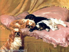 1904 Wardle~4 Cavalier King Charles Spaniel Dog Dogs on Pillows~New Note Cards