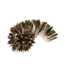 "ZUCKER Rooster Coque Tails Feathers Chinchilla Natural  5-8"" [1/4 LB Bulk]"