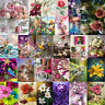 5D DIY Full Drill Diamond Painting Flower Beauty Cross Stitch Embroidery Art Kit