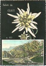 SALUTI DA CLAUT - VEDUTINA CON STELLA ALPINA (PORDENONE) 1960
