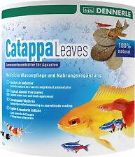 Dennerle Catappa Leaves Large 10 pcs. for Shrimp Fish Betta Discus Antibacterial