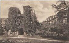 Devon Postcard - Berry Pomeroy Castle - Gateway  2683