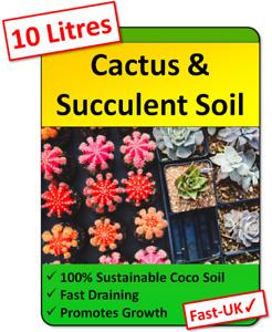 10+ Litres of Premium Cactus Potting Soil Compost Blocks for Cacti & Succulents