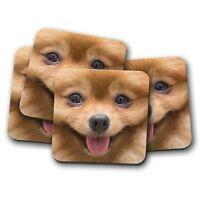 4 Set - Pomeranian Face Coaster - Cute Dog Chihuahua Puppy Funny Mum Gift #8660