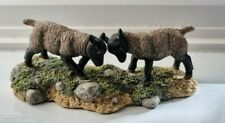 More details for border fine arts 'head to head' suffolk sheep james herriot collection 1972
