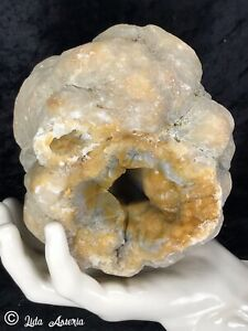 3.3Lb Agate Blue Yellow Botryoidal Chalcedony Crystal Geode Lapidary Quartz