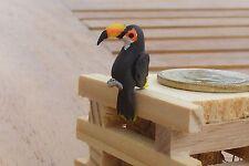 1:12 Scale Air dried Clay Toucan Tumdee Dolls House Garden Accessory Pet Bird A