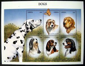 99' MNH LIBERIA DOGS STAMP SHEET DALMATIAN RETRIEVER BASSET HOUND BEARDED COLLIE