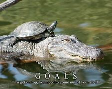 Turtle Farming Motivational Poster Art Painted Alligator Snapping Goals MVP502