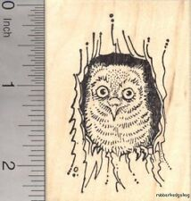 Screech Owl Rubber Stamp, Roosting in Tree J17601 WM