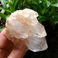325g Elestial Angel Pink Healer Quartz Natural Clear Skeletal Crystal Cluster