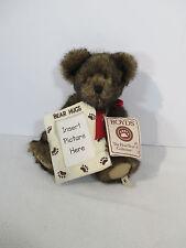 Boyds Bears Hugsley Keepsake Picture Hugs Vtg 2005 Jointed Brown Hang Tag
