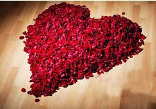 1000 Simulation Flower Rose Petal Wedding Bridal Party Supply Decoration Colors