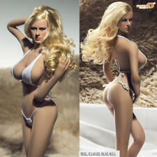 1/6 Super-Flexible Female Seamless Body with Stainless Steel Skeleton in Suntan,