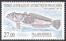 Fsat/TAAF 1997 espinosas plunderfish/pescado/Naturaleza/Vida Salvaje/Marine 1v (n23034)