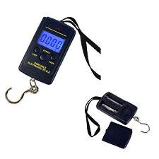électronique Digital LCD Balance Pèse Aliment Bagage Valise Poisson 40kg Cuisine