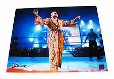 WWE RIC FLAIR 16X20 UNSIGNED PHOTO FILE PHOTO 2 VERY RARE