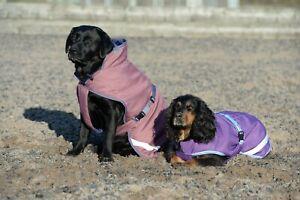 Hundedecke Freedom Dog Rug 50 von Bucas UVP 37,00 € oder  PREISVORSCHLAG!!!