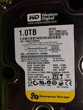 Western Digital 1 TB WD1002FBYS-02A6B0 DCM:HBRNHT2CA 15NOV2009 | disco rigido