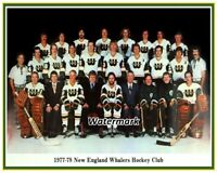 WHA 1977 - 78 New England Whalers Color Team Picture The Howe's 8 X 10 Photo