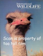 Japan's Whooper Whooping Crane, Swans, Kenya Safari Hunters, Ostriches, Boar