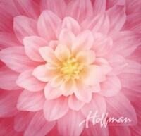 Dream Big~Wild Rose~Digital 43'' x 43'' Floral  Panel - Cotton Fabric by Hoffman