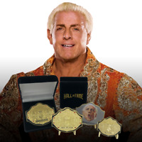 "Ric Flair Wooooo ""Big Gold"" Championship Wrestling Belt Challenge Coin plus more"