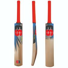 Kashmir Willow Cricket Season Bat Professional Lightweight Multicolor Pack of 2