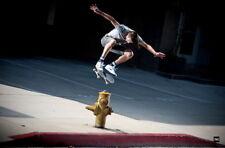 "071 Nike Art Poster - Janoski SB Skateboard Art Shoes 21""x14"" Poster"