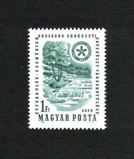 Hungary 1964 Forestry Federation/ Trees/ Waterfalls single value (SG 1986) MNH