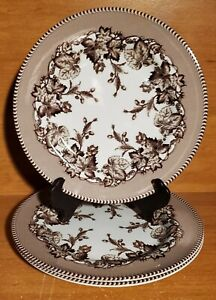 """Williams-Sonoma / Spode WESTBOURNE Salad plate set of 3, 8 3/8"""", Excellent"""