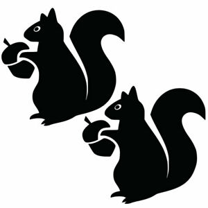Qty 2 Squirrel Stickers Car Window Wall Decals Any Colour KKK 10cm - 50cm
