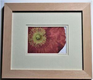 Original embroidery, Poppy close up, Hazel Smith 2002, signed dated & framed