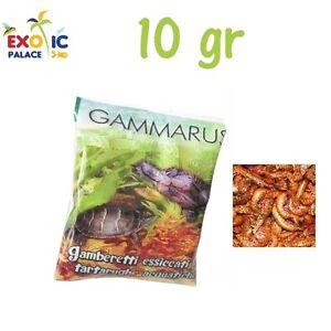 GAMMARUS 10gr GAMBERETTI ESSICCATI PER TARTARUGHE ACQUATICHE CIBO MANGIME TURTLE