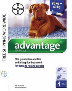 Pack 4 Advantage 400 Extra Large Dog 25Kg - 40Kg (55lb - 88lb) - ADVANTAGE