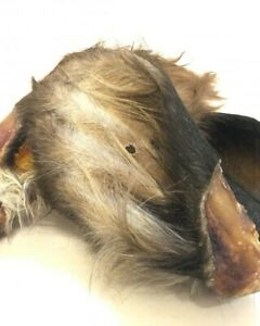 Dried Large Cows Ears With Fur 100% Natural Dog Treats/Dewormer x10 CHEAP!