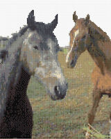 "Pair of Horses / Ponies - Cross Stitch Kit 8"" x 10"" - 14 Count Aida, Anchor"