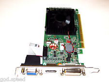 1GB 1024MB NVIDIA GeForce Single Slot Active Fan PCIe x16 HD Video Graphics Card