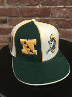 NEW VINTAGE GREEN BAY PACKERS NFL GRIDIRON CLASSICS REEBOK FITTED CAP HAT