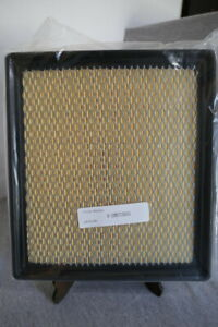 NEW Genuine GM 20972655 Air Filter