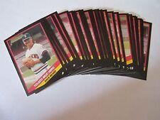 1988 CMC TOLEDO MUD HENS Minor League Complete 25 Card Team Set - TIGERS