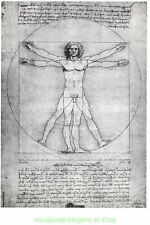 Leonardo Da Vinci 1970's Commercial Print PROPORTIONS by Personality Posters