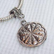 Lemon Orange Fruit Slice Food Dangle Bead fits Silver European Charm Bracelets