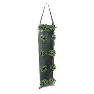 Silverline Hanging Plant Growing Tube Pack of 2