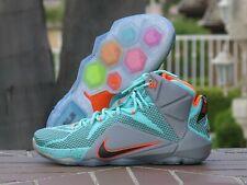 Nike Lebron XII Men's Basketball Sneakers 684593-301