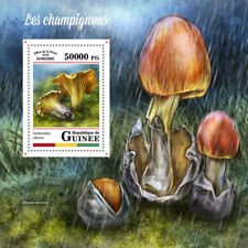 Guinea 2018 MNH Mushrooms Cantharellus 1v S/S Champignons Fungi Nature Stamps