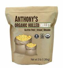 New listing Organic Hulled Millet Grain Salads Dietary Fiber Protein Vitamins Minerals Rice