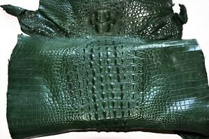 Crocodile Skin Leather Hide Exotic Skin Craft Supply Army Green Size 30cm