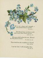 ANTIQUE FLOWERS BLUE FORGET ME NOTS IVY PLANT GOD BIBLICAL VERSES COLOR PRINT