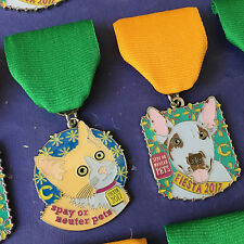 2 Cannoli Fund 2017 Fiesta Medals Kitten Dog San Antonio Orange Cat Bull Terrier